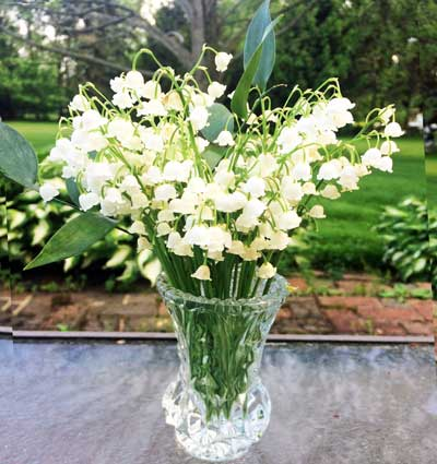 Lilies of the Valley by the Garden by the Gate Floral Design